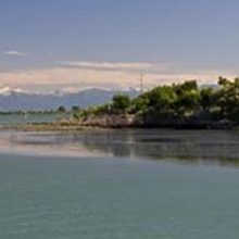 Naturschutzgebiet Foce dell 'Isonzo